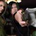 Resident Evil Damnation – Ada Wong