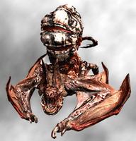 Popokarimu - Resident Evil 5