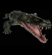 Resident Evil 2 - Alligator
