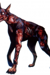 Resident Evil 2 – Chiens