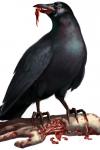 Resident Evil 2 – Corbeaux