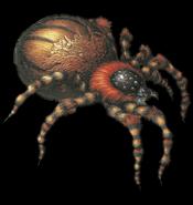 Resident Evil 2 - Araignées