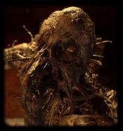 Resident Evil 7 - Mycomorphe des Marais